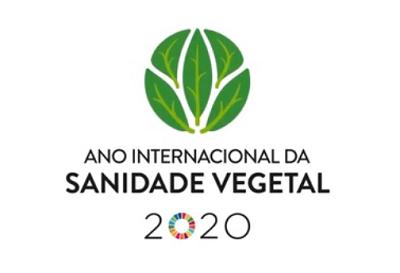 A GROQUIFAR e o Ano Internacional da Sanidade Vegetal