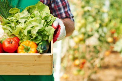Comissão Europeia | Evento: Uso Sustentável de Pesticidas